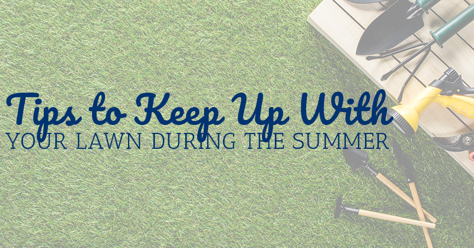Tips to Keep Up With Your Lawn During the Summer